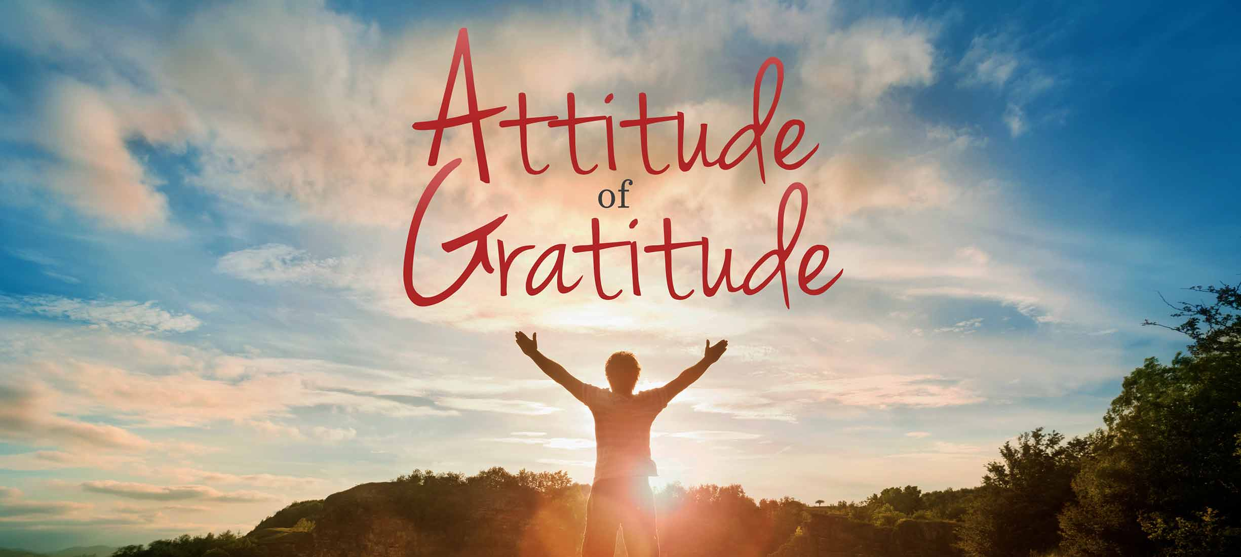 Spread the Love – World Gratitude Day – 3 Simple Steps to Feel More Love